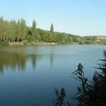 Boleradický rybník